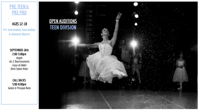 Click to view / download The Nutcracker audition flyer